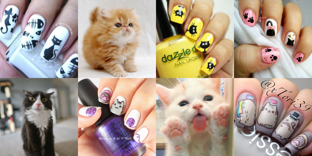 cats-kitties-nails-cover