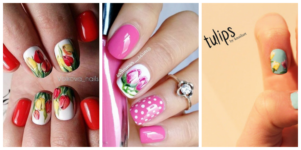 tulip-cover